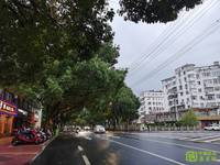出租幸福阳光小区旁自建房40平米450元/月住宅